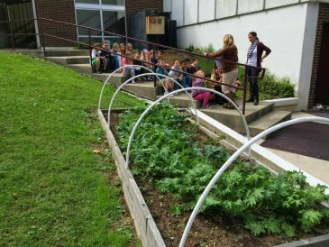 "Pikeville Elementary's ""Low Tunnel"" Garden Survives Unheated and Undaunted"