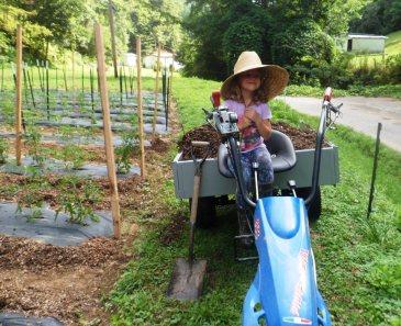 Four Petal Farm