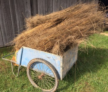 Woven Roots Podcast #7 Fiber Tells a Story: Flax, Hide Tanning, and the Magic of Fiber Arts at Cedar Creek Farm